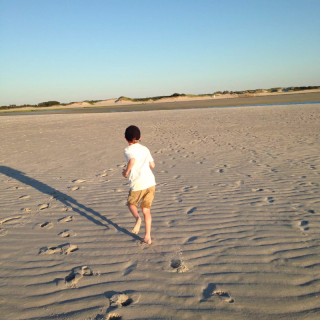 Henry run away on beach 2015